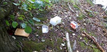 Müllentsorgung am Waldsee